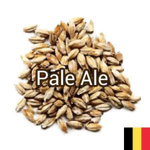 Солод Pale Ale (базовый), Castle Malting 1кг